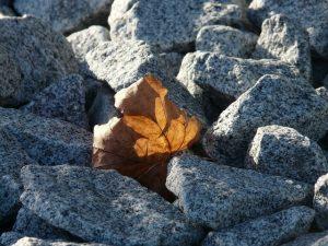 Een steenkorf in je tuin voor mooie ervaringen
